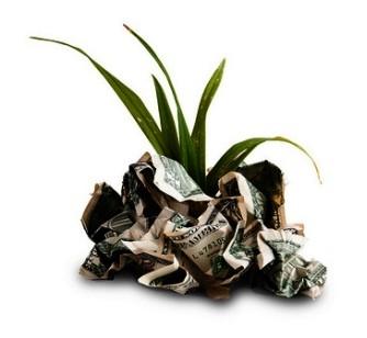 Grass growing out of dollar bills