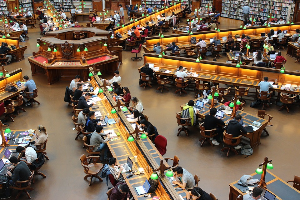 library full of students studying