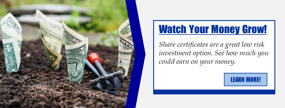 Watch your money grow! Share certificates are a great low risk investment option. See how much you could earn on your money. Learn more!